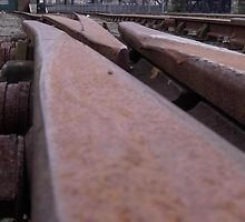 Rusting Rails by Gerry  Temple