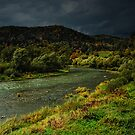 Poprad river in the Poland by Patrycja Makowska