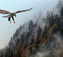 Rising Mist by EagleHunter