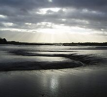 'Glorious Mud'  ( River Deben, Suffolk ) by wiggyofipswich