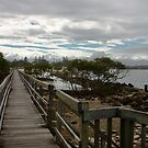 Urunga Boardwalk by Lawrie McConnell