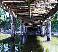 Beneath the jetty. by lu138