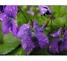 Life Giving Rain... Photographic Print