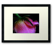 Pearl Rose. Framed Print