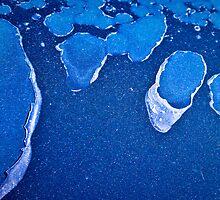 Blue Lagoons by Susana Weber