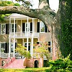 Southern Style - Beaufort Houses Series © by Mary Campbell