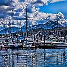 Alaska Harbor by Glenn Forrest