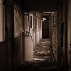 Derelict by SmileyShazza