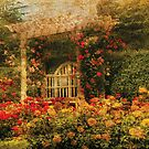 Bench - The Rose Garden by Mike  Savad