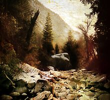 Little Cottonwood Creek by Ryan Houston