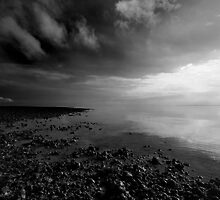 Mersea Beach  by Nigel Bangert