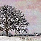 Oak Tree in Field by Joselyn Holcombe