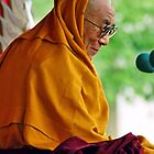 HH Dalai Lama. pin valley, northern india by tim buckley   bodhiimages