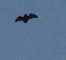 Batman? by Corkle