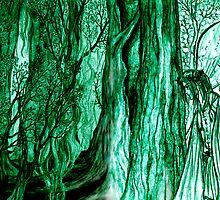 Duran's Wood by Rebecca Tripp
