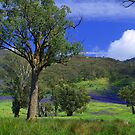 Yackandandah area of Northern Victoria, Australia by Bev Pascoe