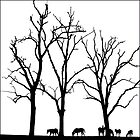 Three Trees and Seven Horses by Grant Davidson