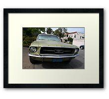 Mustang walk by Framed Print