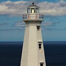 Cape Spear Lighthouse by DebYoung