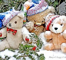 Three  Teddy Bear friends  in snow. Erasmus, Vintage and Little Red Panda  Bear by pogomcl