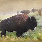 It's Raining Bison by Kay Kempton Raade
