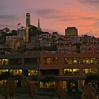 Coit Tower by Roi  Brooks