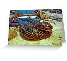 Tiger Snake I Greeting Card