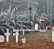 Mailbox Enthusiast by Alex Preiss