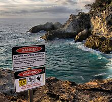 Danger on Stradbroke Island by MathomHouse