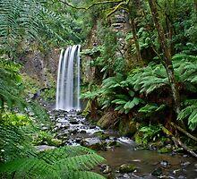 A Natural Paradise by Mieke Boynton