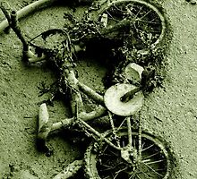I want to ride my bycicle by TriciaDanby