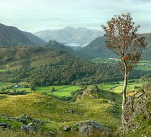 Borrowdale by VoluntaryRanger
