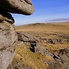 Dartmoor: Looking Towards Roos Tor by Rob Parsons