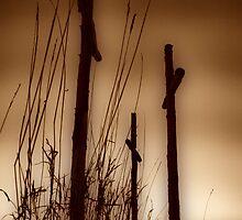 Three Crosses on a Hill by Melanie  Johannsen