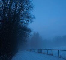 Snowy path, Dalkeith Country Park, Scotland by Michael Marten