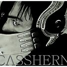 Casshern Collection - I am Casshern by Dead as a Dodo Limited