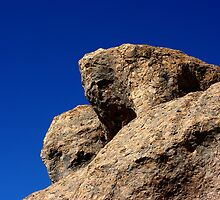 Rock On at City of Rocks by Vicki Pelham