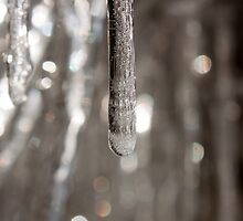 Icicle macro by Copperhobnob