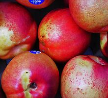 Delicious Nectarines by Elizabeth Hoskinson