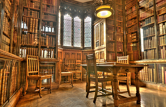 """""""Quiet Please in the Library"""" by Stephen Knowles"""