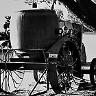 """The Old Water Wagon"" by Gail Jones"