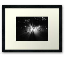 Creeping Framed Print