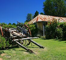Ackerman's Cottage, Hill End, NSW by Linda  Appleby