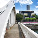 Bridges of Singapore by Adri  Padmos