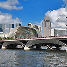 Bridges of Singapore 5 by Adri  Padmos