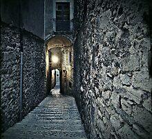 Old Town Walls by Mojca Savicki