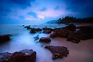 The horizon lies that way by Vikram Franklin
