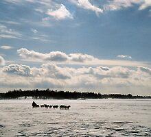 """  Rush Hour  -  Kenora, Ontario  "" by fortner"