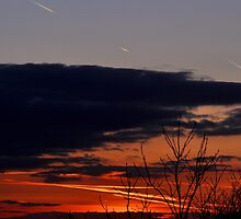 Sunset with aircraft vapour trails in sky by vkirbys