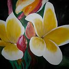 Plumeria by mhubbard